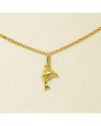 Gouden hanger met collier - 40.0 cm